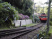 P7010009r